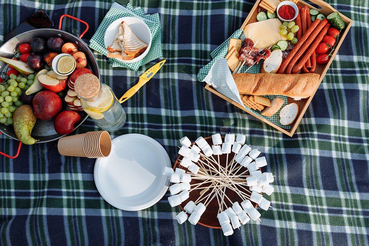 Picknick met hele gezin